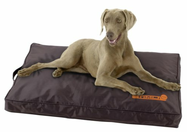 carrelage design tapis pour grand chien moderne design pour carrelage de sol et rev tement. Black Bedroom Furniture Sets. Home Design Ideas