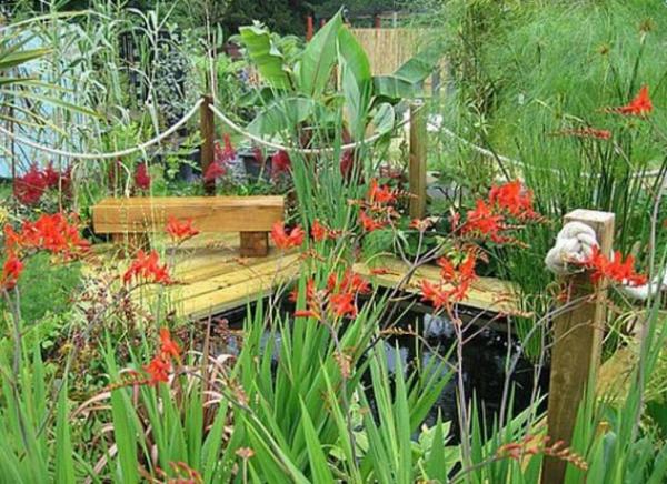 tranquille-jardin-avec-des-plantes-originales