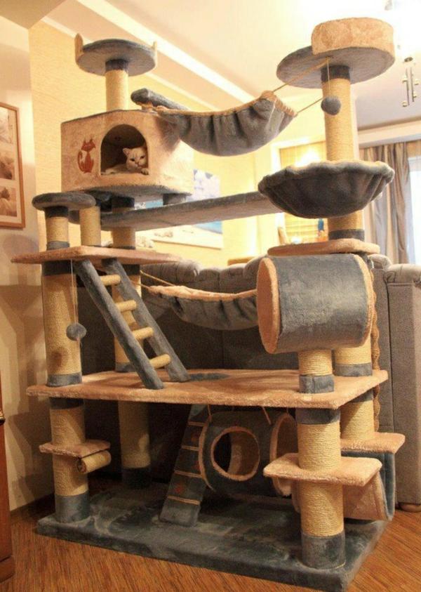 Pour le chat domestique - elle a aussi besoin de logement