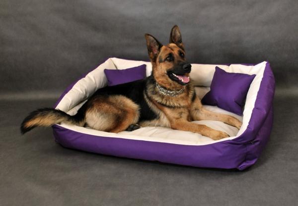violet-moderne-panier