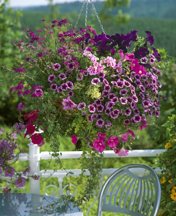 Choisir une plante pour jardini re quelques id es et for Grosse jardiniere