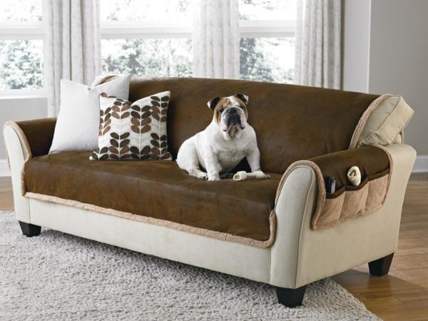 canapé-de-cuir-vintage-avec-deux-coussins-décoratifs-et-un-chien-sur-lui