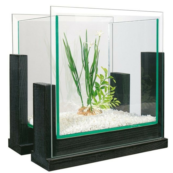 Aquarium nu pas cher un aquarium design pas cher quelques for Achat aquarium design