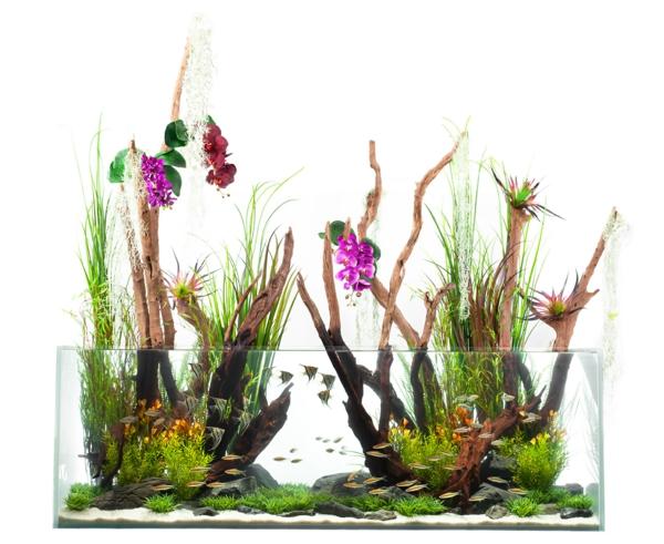 aquarium-design-simple-cool