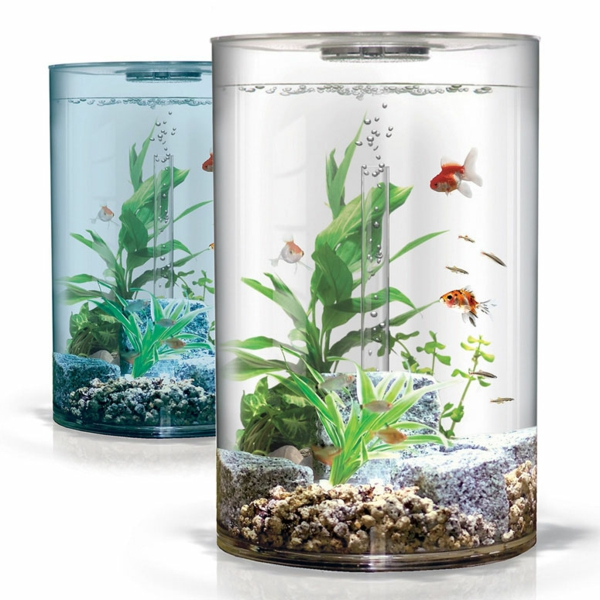 Pour aquarium pas cher 28 images table basse aquarium for Aquarium a acheter