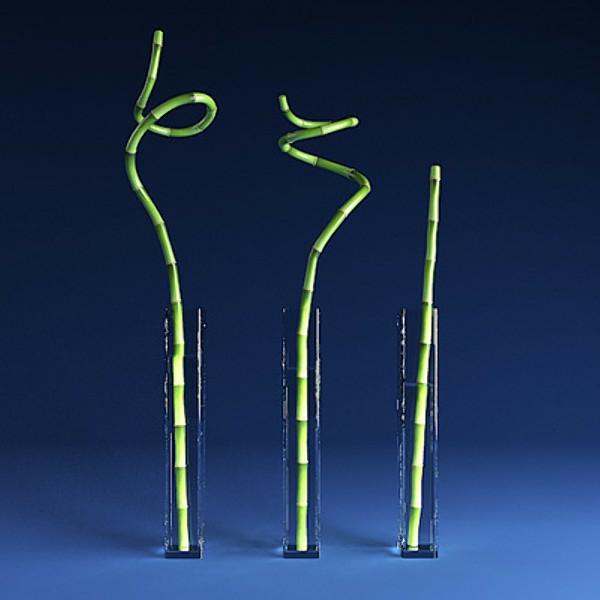 bambou-decoratif-idee-decoration-vases