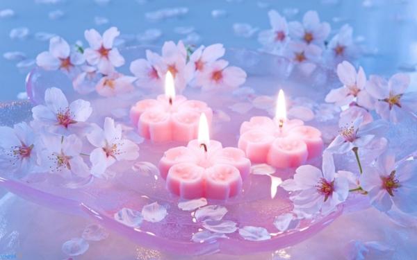 bougie-fleur-cerisier