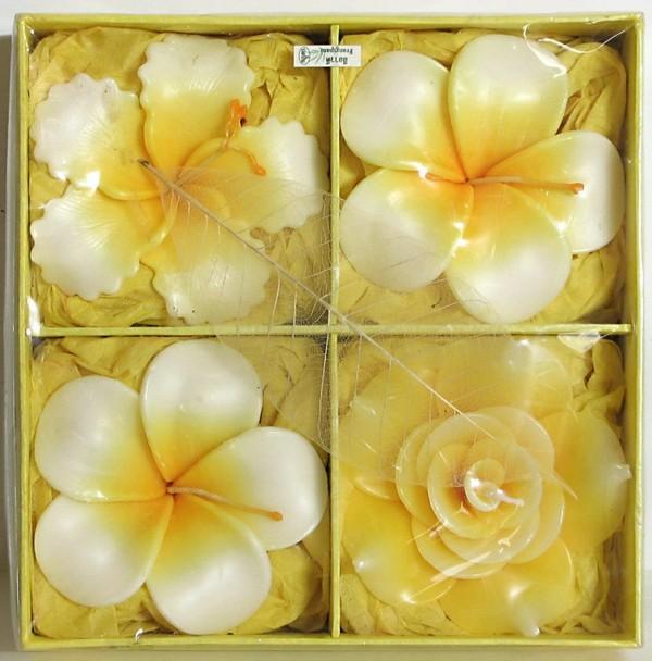 bougie-fleur-jaunes-boite