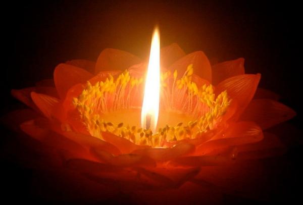 Une bougie fleur source d 39 inspiration et touche d for Dans ke noir
