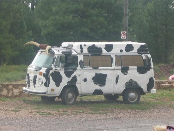 camping-car-insolite-vache