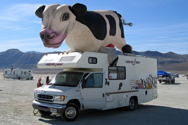 camping-car-insolite-vache-toit