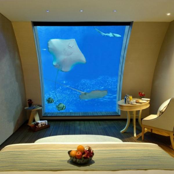 chambre-de-luxe-sous-marine-poisson