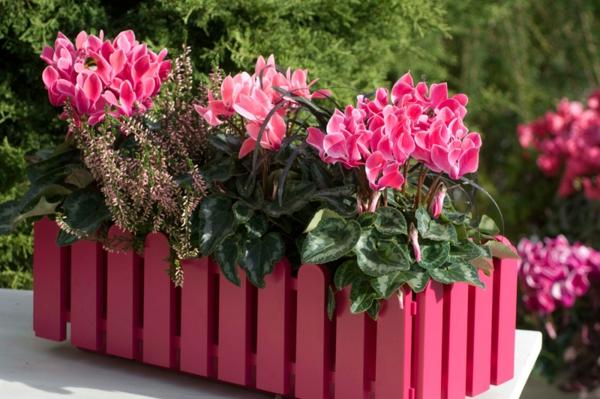 Choisir une plante pour jardini re quelques id es et astuces - Idee composition jardiniere exterieure ...