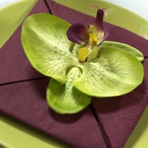 La déco serviette en papier - un jeu amusant et une décoration attrayante