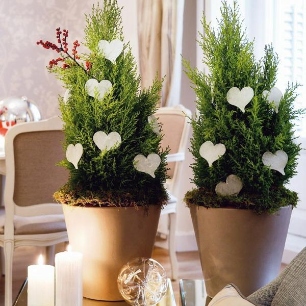 decoration-nouvel-an-pots-de-fleurs