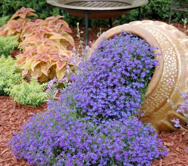 design-de-jardin-avec-lavandre-resized