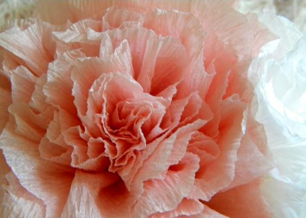 fleur-en-papier-crepon-rosae-vue-de-pres