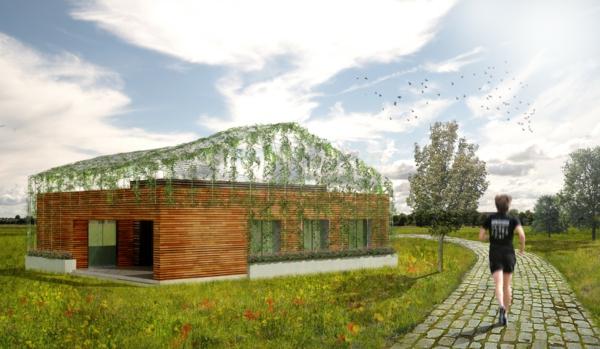 la-maison-en-bois-unique-toit-transparent