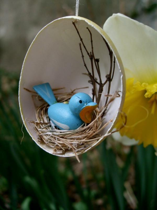 oeufs-decore-idees-oiseau-bleu