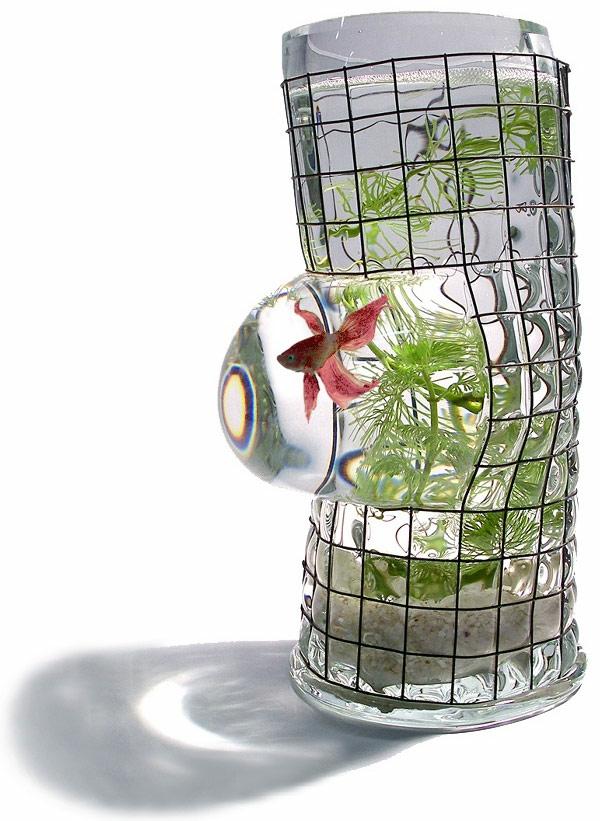 petit-aquarium-design-intéressant