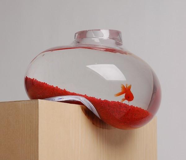 Le petit aquarium design quelques id es mignonnes for Aquarium vase pour poisson rouge
