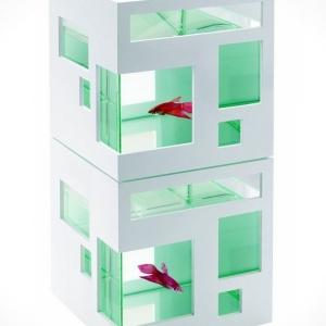 Le petit aquarium design - quelques idées mignonnes