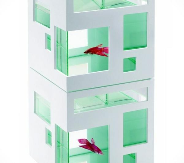 petit-aquarium- design-23