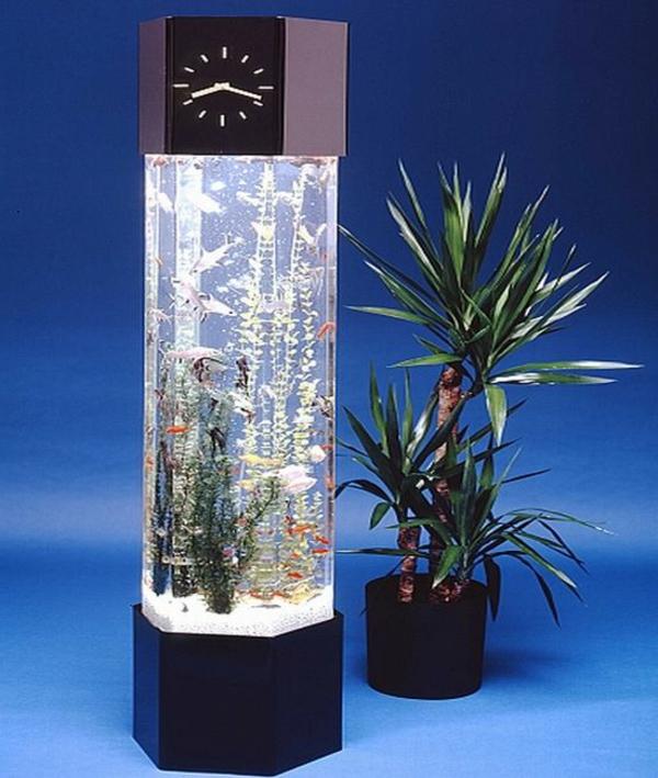 petit-aquarium-design-un-horloge