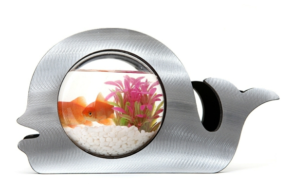 petit-aquarium-design-poisson