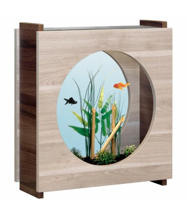 Le petit aquarium design quelques id es mignonnes for Petit aquarium rond