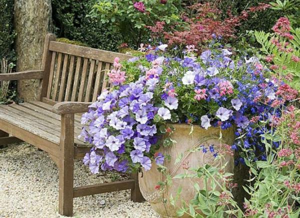petunia-jardiniere-resized