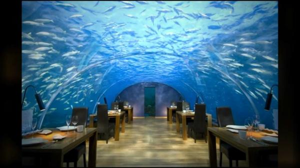 resataurant-hilton-maldives-de-luxe-sous-marine