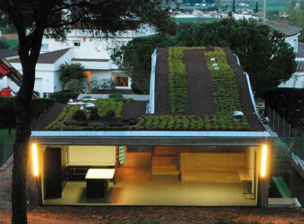 Hydroponiaque-Rooftop-Garden-of-Villa-