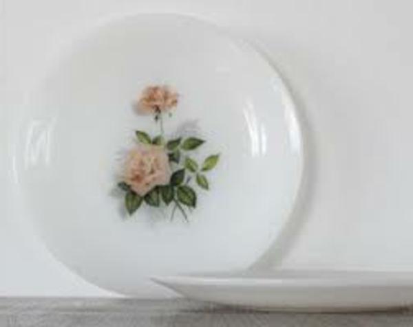 assiette-arcopal-roses-beiges