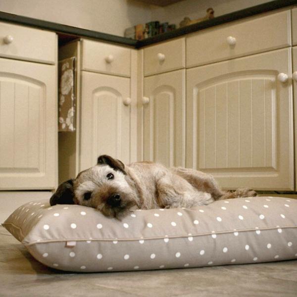 coussin-pour-chien-pointillé-beige