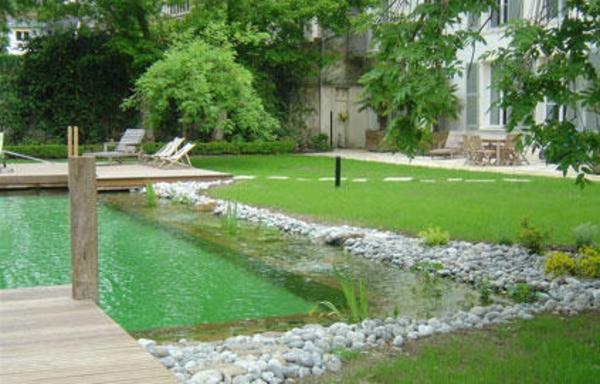 créer-piscines-naturelles-