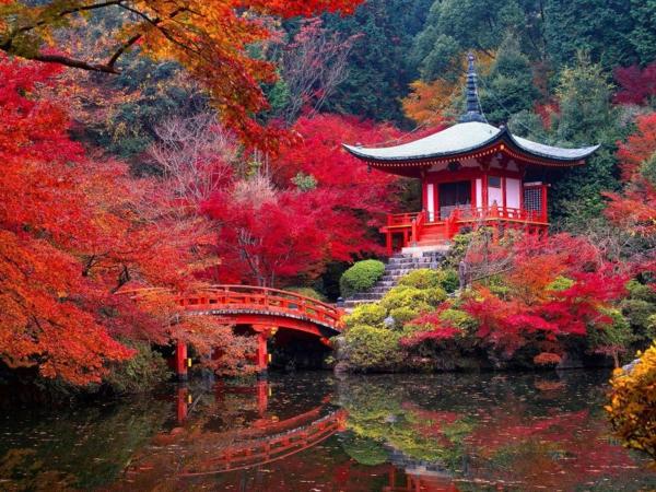 Le jardin japonais encore 49 photos de jardin zen for Jardin kyoto