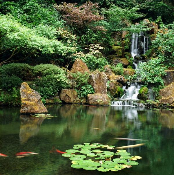 jardin-japonais-avec-une-chute-d'eau