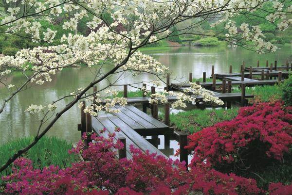 jardin-japonais-couleurs-splendides