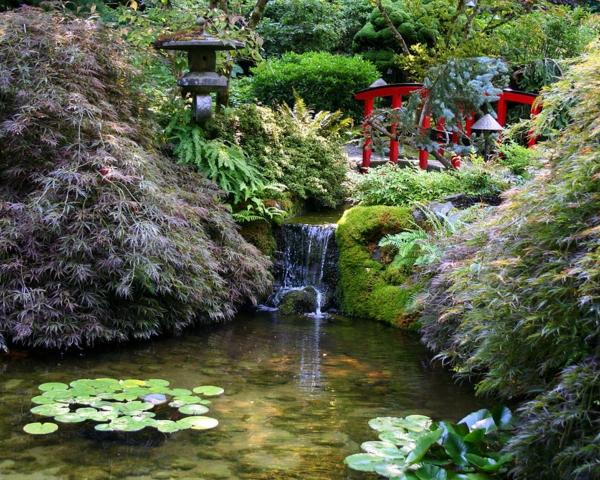 jardin-japonais-sérénité-et-une-chute-d'eau