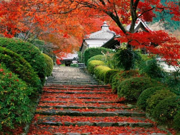 jardin-japonais-un-escalier-à-Kyoto