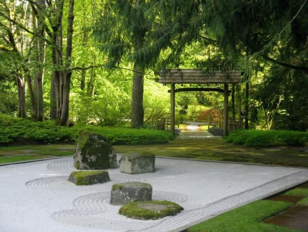 jardin-japonais-un-forêt