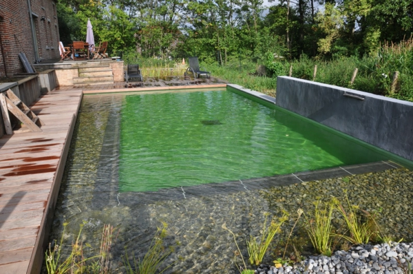 Mod les de piscines naturelles for Autoconstruction piscine naturelle