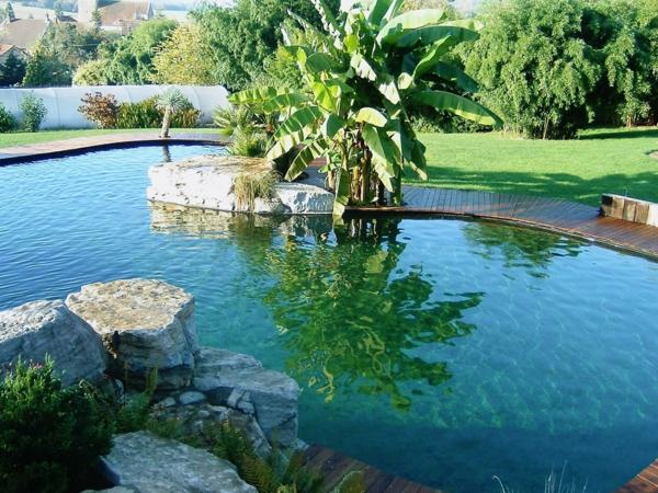 magnifique-piscine-naturelle-