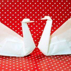 Une origami serviette resplendit la table et vous donne une humeur optimistique