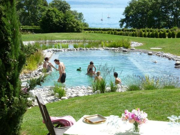 Mod les de piscines naturelles for Piscine ecologique
