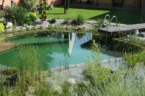 piscine-naturelle-bionova-retour-baignade