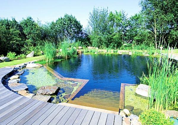 piscine-naturelle-l