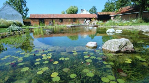 piscines-enterrees-naturelles