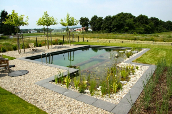 piscines-naturelles-grands-et-petits